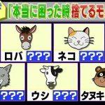 月曜から夜ふかし》動物と別れる順番で分かる心理テスト!村上も大的中した診断結果とは!?