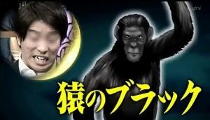 月曜から夜ふかし,動物占い,ペガサス,猿9