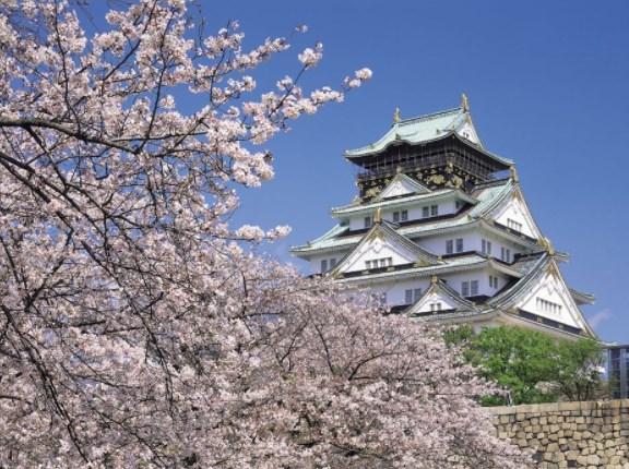 大阪城公園,花見,2021,いい,開花予想,穴場,桜