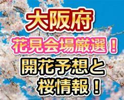 大阪,花見,2018,桜,おススメ,穴場.スポット,デート