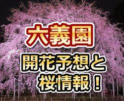 六義園,東京,六義園,花見,2018,東京,開花予想,穴場,桜