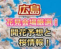 広島,花見,2018,桜,見頃,おススメ,穴場.スポット,デート