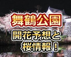 舞鶴公園,福岡,花見,2018,開花予想,穴場,桜