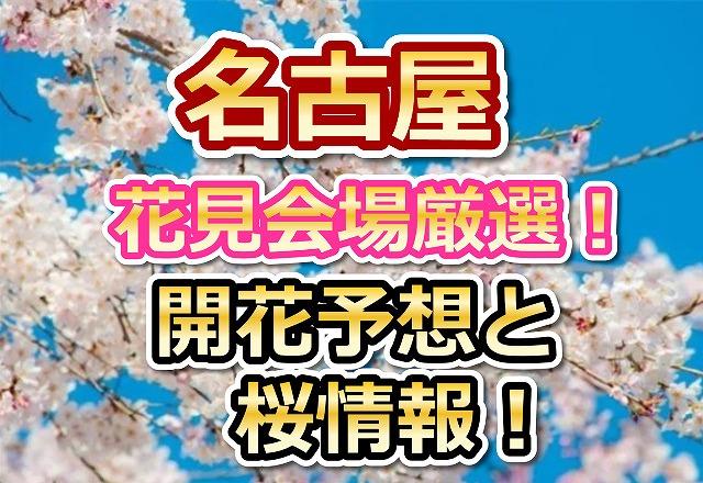 花見,2018,桜,見頃,おススメ,穴場.スポット,デート