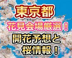 東京,花見,穴場,桜