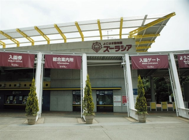 よこはま動物園ズーラシア,混雑,混雑状況,駐車場,アクセス,最寄り駅,トイレ