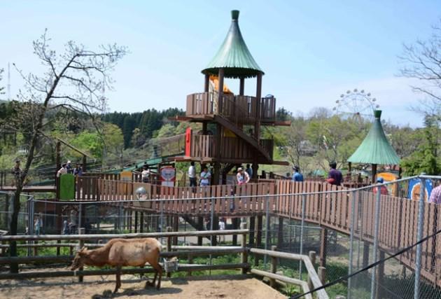 秋田市大森山動物園,混雑,混雑状況,駐車場,アクセス,最寄り駅,トイレ